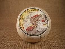 Kaas Caxigon